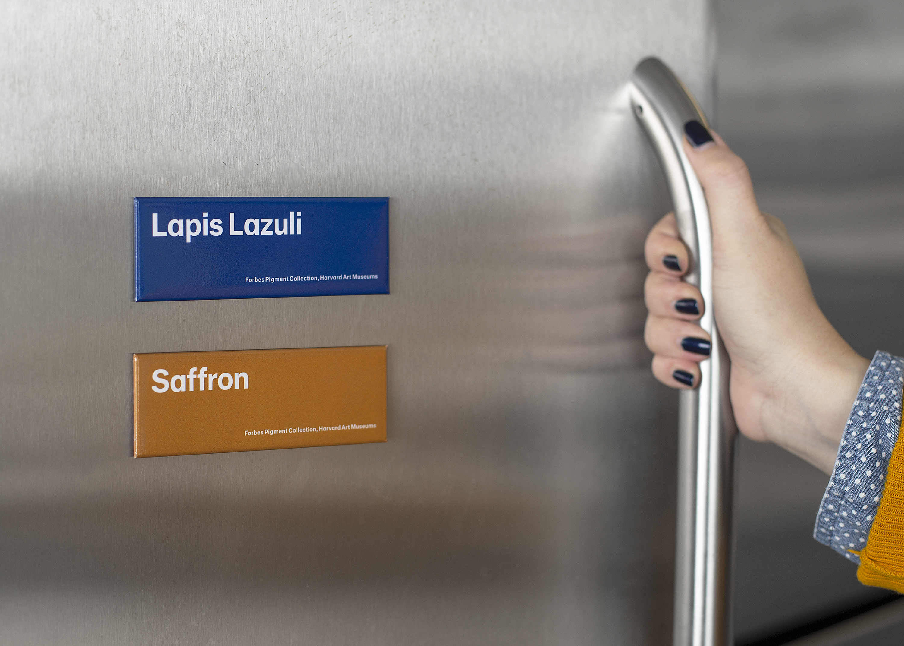 "Two magnets--a blue one is labeled with ""Lapis Lazuli"" and an orange one with ""Saffon""--are stuck to a silver fridge; a hand is resting on the fridge handle."