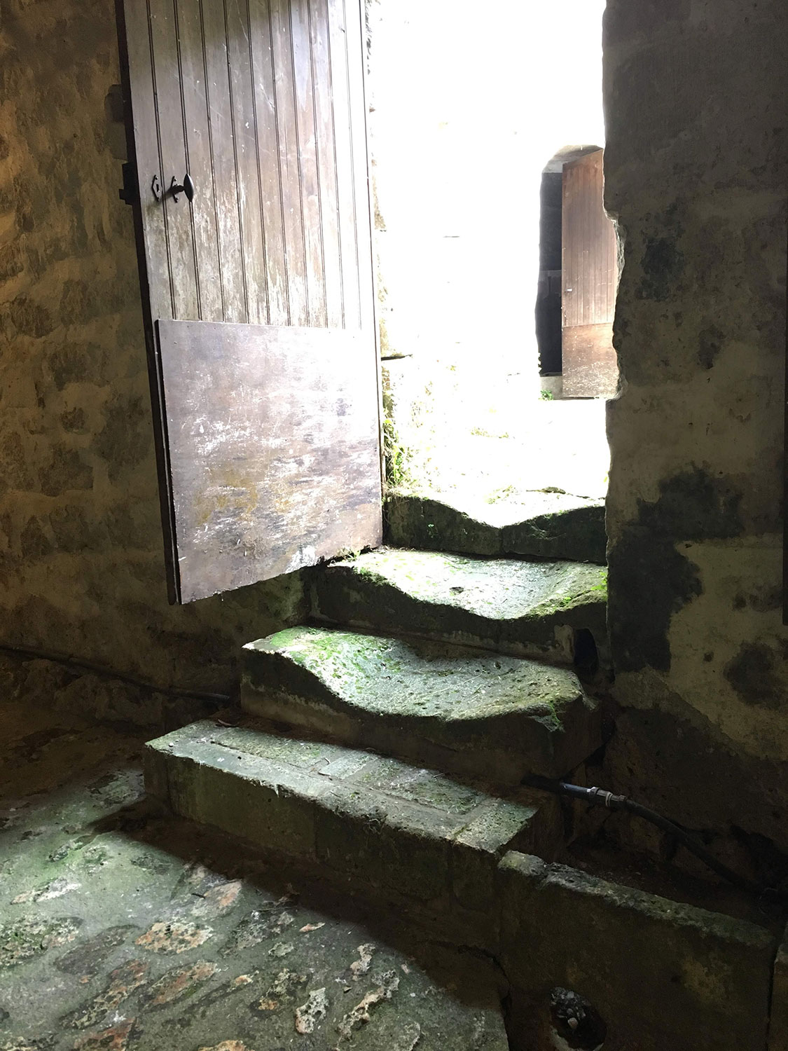 Four stone steps, leading to a sunny outdoors, appear moss-stained and deeply worn down in their centers. There is a wood door that opens into the building at left. A rough stone floor is visible in the foreground.