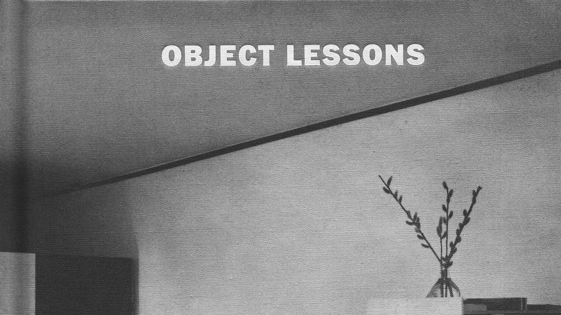 "This black and white photograph shows the ceiling and upper wall of a room. The corner at left is in a darker shade and there seems to be an open door. On the right is the top half of a glass vase with three long stems. The title ""Object Lessons"" is printed in white."