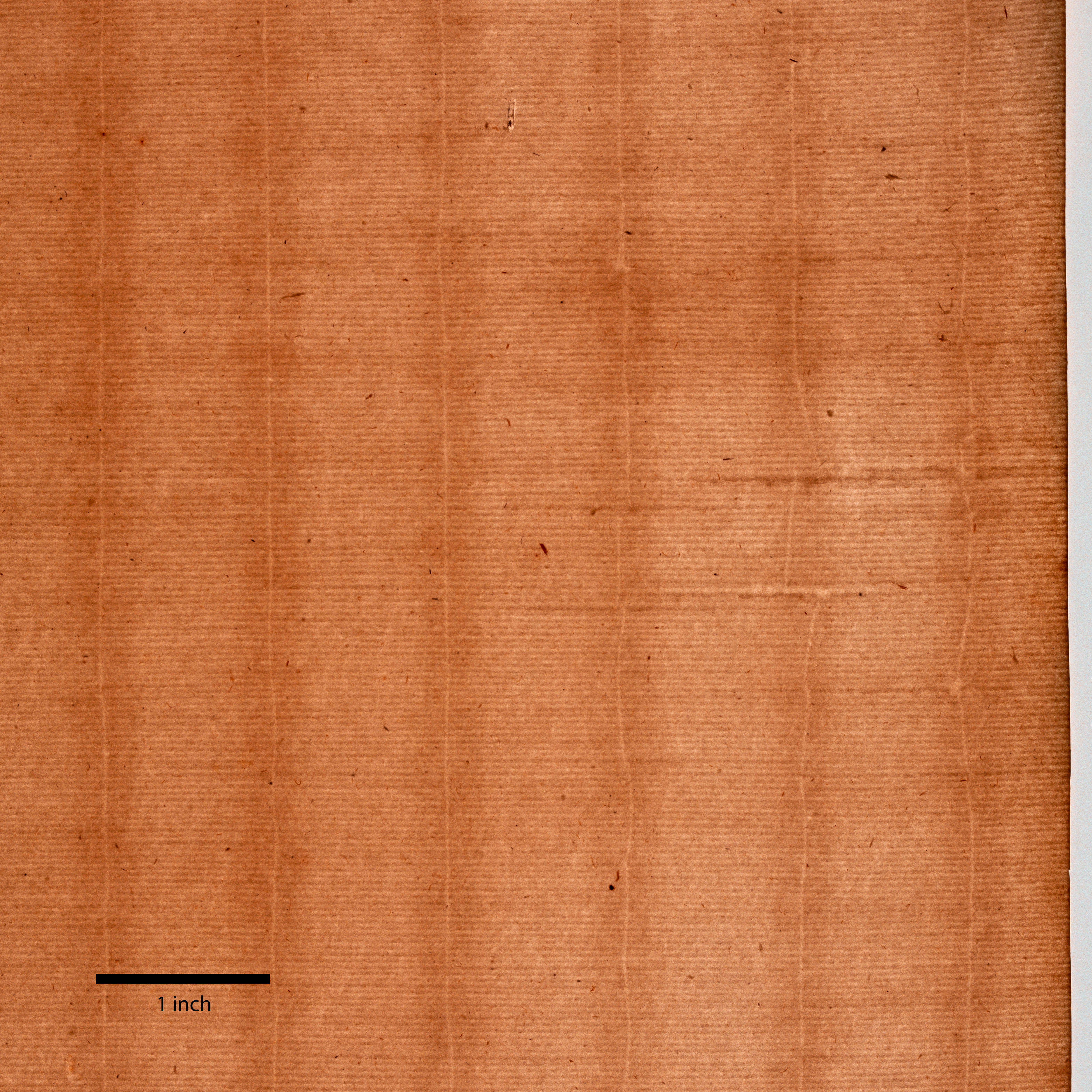 A piece of brown paper shows thin parallel horizontal lines and six vertical lines. In the top third of the paper, the horizontal lines are irregular. A thick black line marks one inch at bottom left.