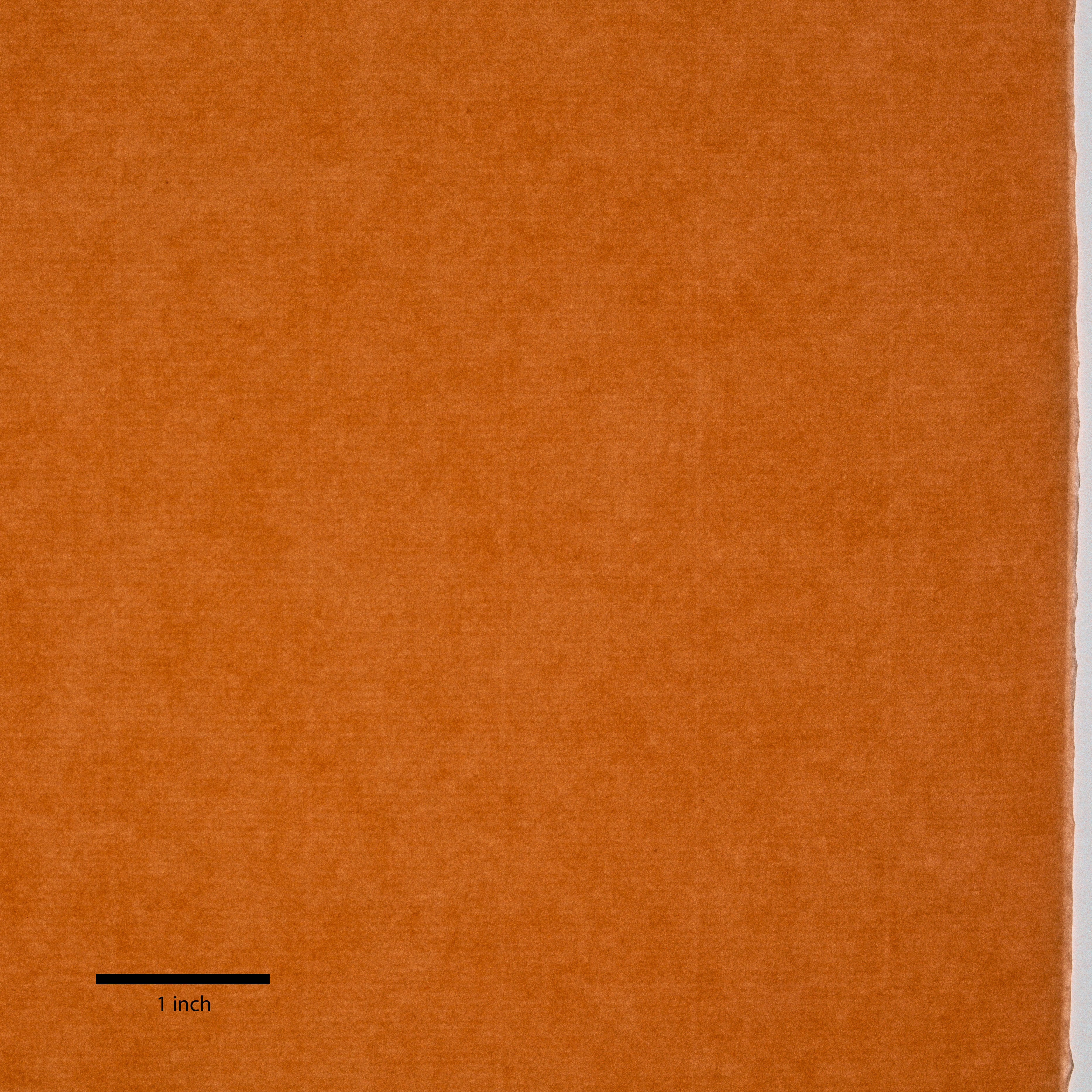 An even-colored dark orange sheet has a lighter colored edge on the right side. A thick black line marks one inch at bottom left.