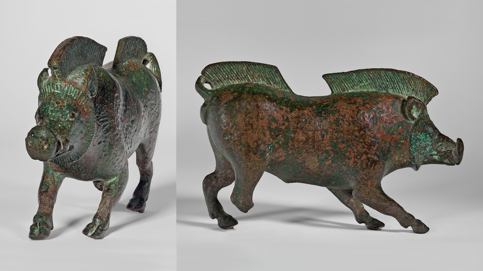 This split-screen image shows two sides of a realistic sculpture of a boar. On the left is a frontal view; on the right is a side view.