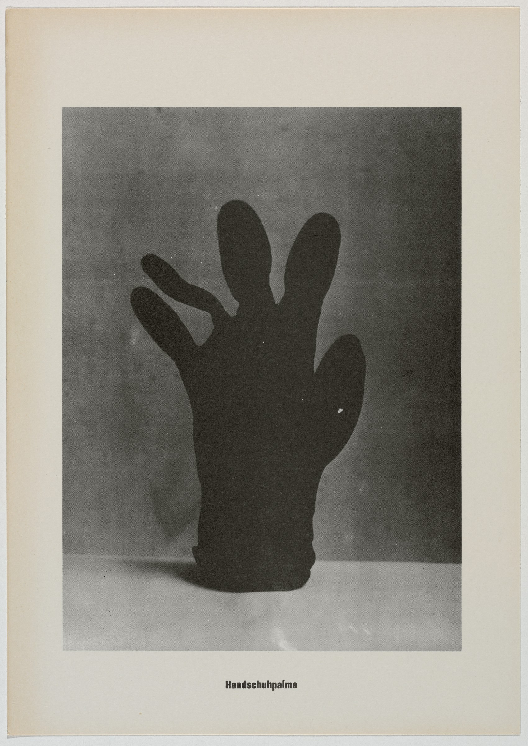 """This black and white lithograph shows a black glove on a light foreground. The fingers and thumb are spread out and slightly twisted to form the shape of a palm tree. Text at the bottom reads """"Handschuhpalme."""""""
