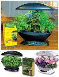 AeroGarden With Gourmet Herbs - Black