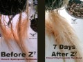 Z7 Water Conditioner For Soil And Hydroponics 8 Oz 1