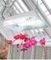 Sun System Garden Bright Fluorescent Grow Light 2