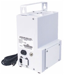 Powerhouse Ballast 1000 Watt Convertible (Sod/Hal)