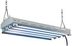 New Wave 24 - T5 Fluorescent - 2 Foot, 4 Lamp Fixture