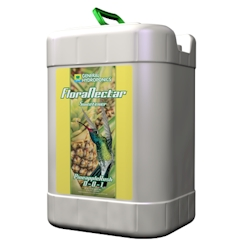 FloraNectar Pineapple Rush 6 Gallon