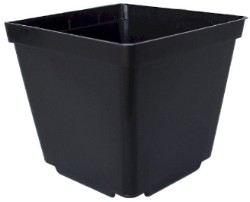 Injection Molded Square 4 inch Pot pack of 50
