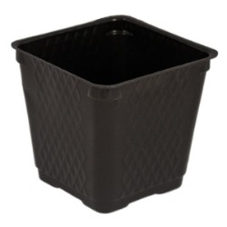 Blow Molded Square Pot 3.5in case of 1375