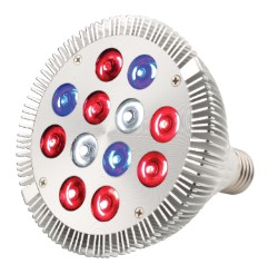 AgroLED 12 Watt Led Lamp