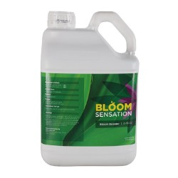 Bloom Sensation 5 Liter