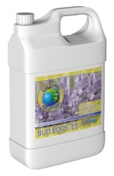 Cultured Solutions Bud Booster Mid Quart