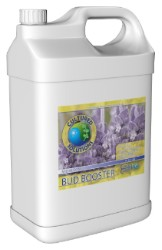 Cultured Solutions Bud Booster Mid Gallon