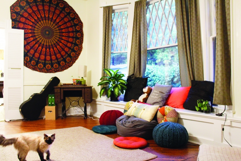 Using decorations like pillows and tapestries can add color to a living or dining room.Senior hannah roman said that plants bring both life and color to a room.