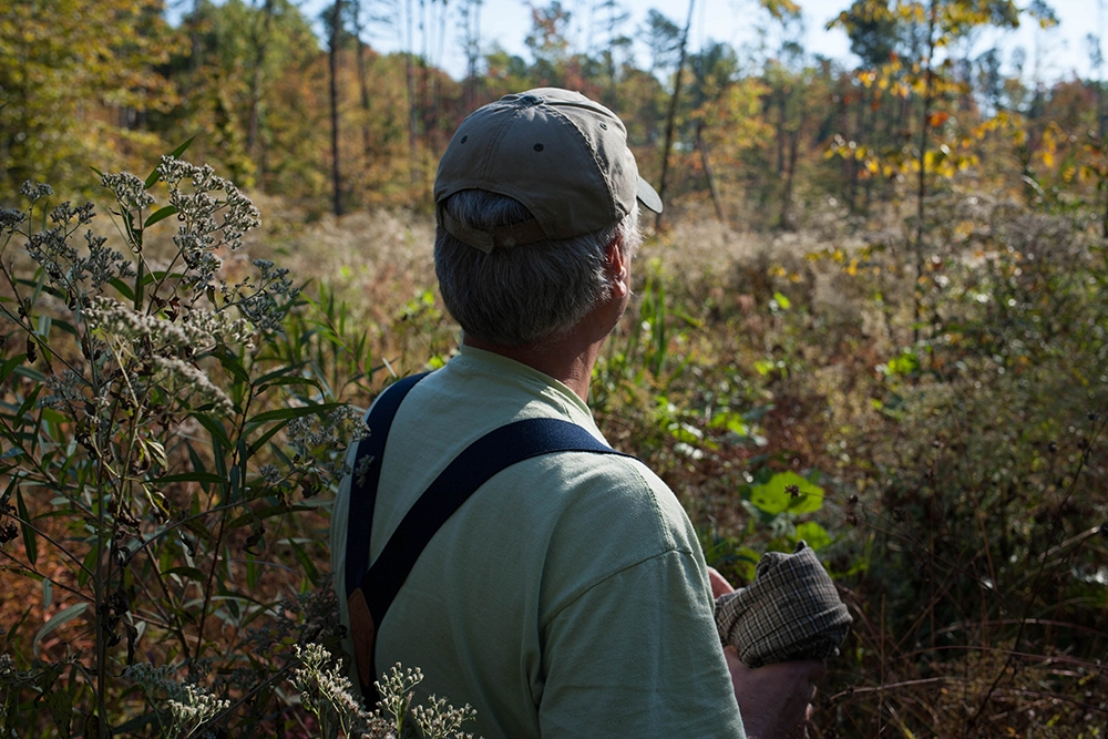 David Seastrom looks out at an area of Yellowwood State Forest that had been logged two years ago.