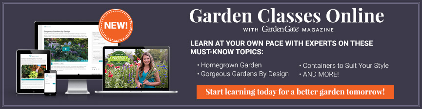 Garden Gate Online Education Zone 07 2018-07-17