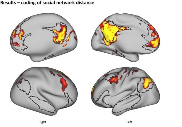 Brain coding of social network structure