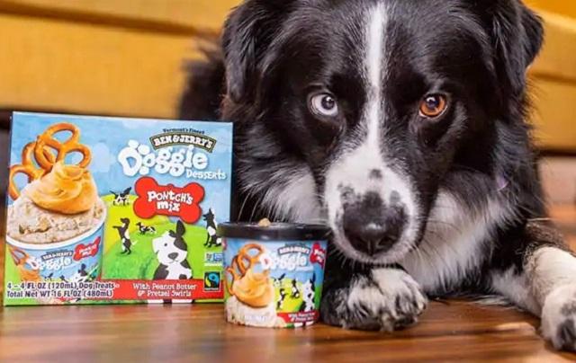 Ben & Jerry's Doggie Desserts