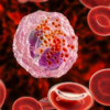 Our Body's Allergy-Causing Cells Can Help immunotherapy Destroy Malignant Tumors