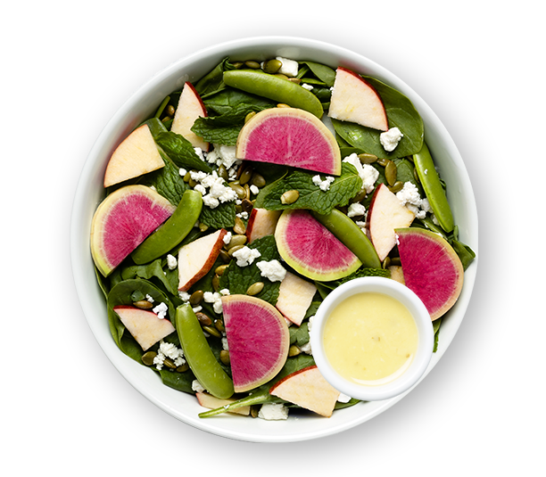 Watermelon Radish + Goat Cheese