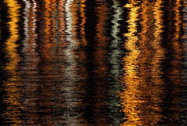 reflections3147713287_b28b425c6f_z (1)