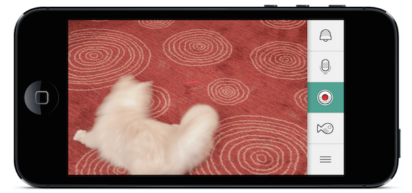 app_videoRecordingBlk