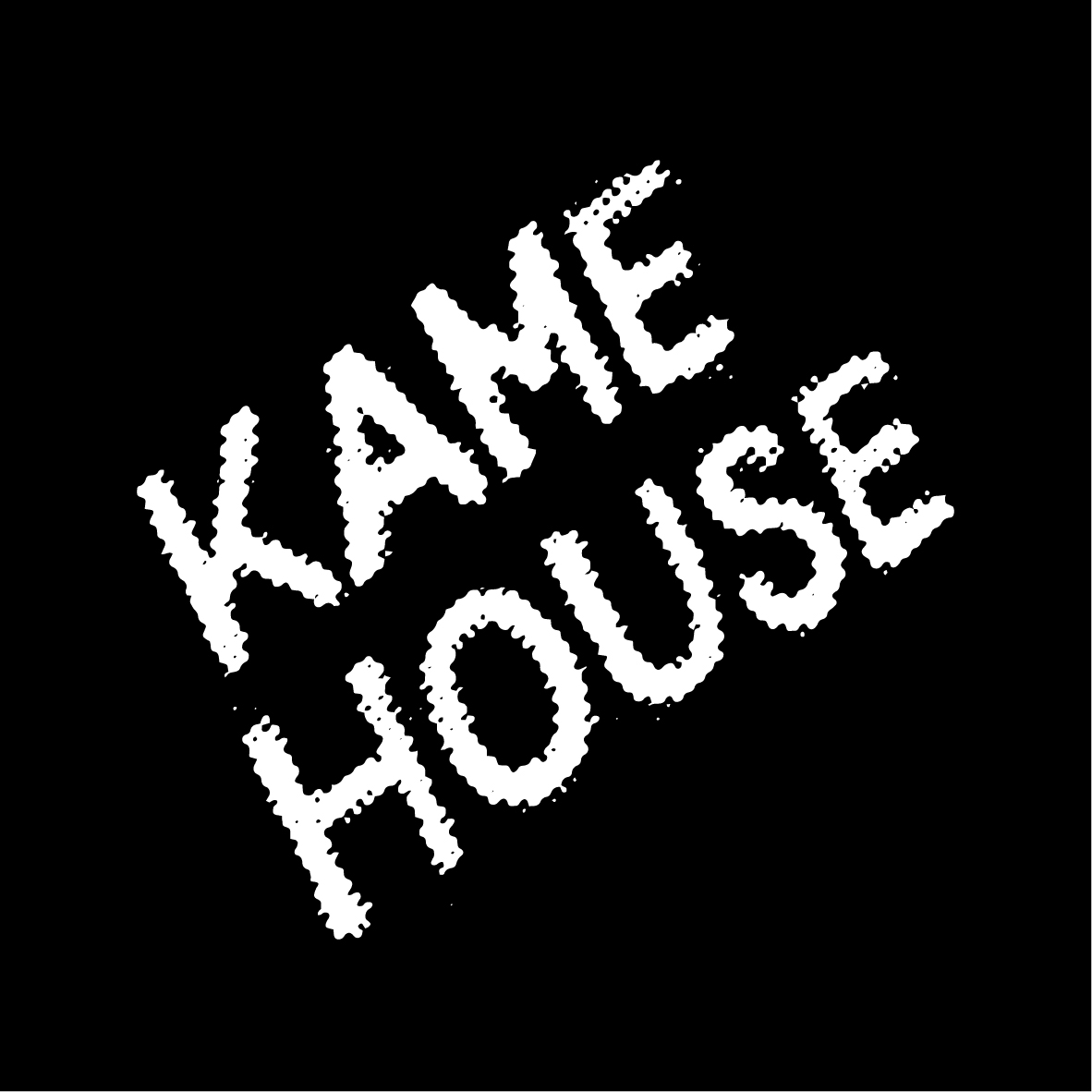 Profile picture for Kame House