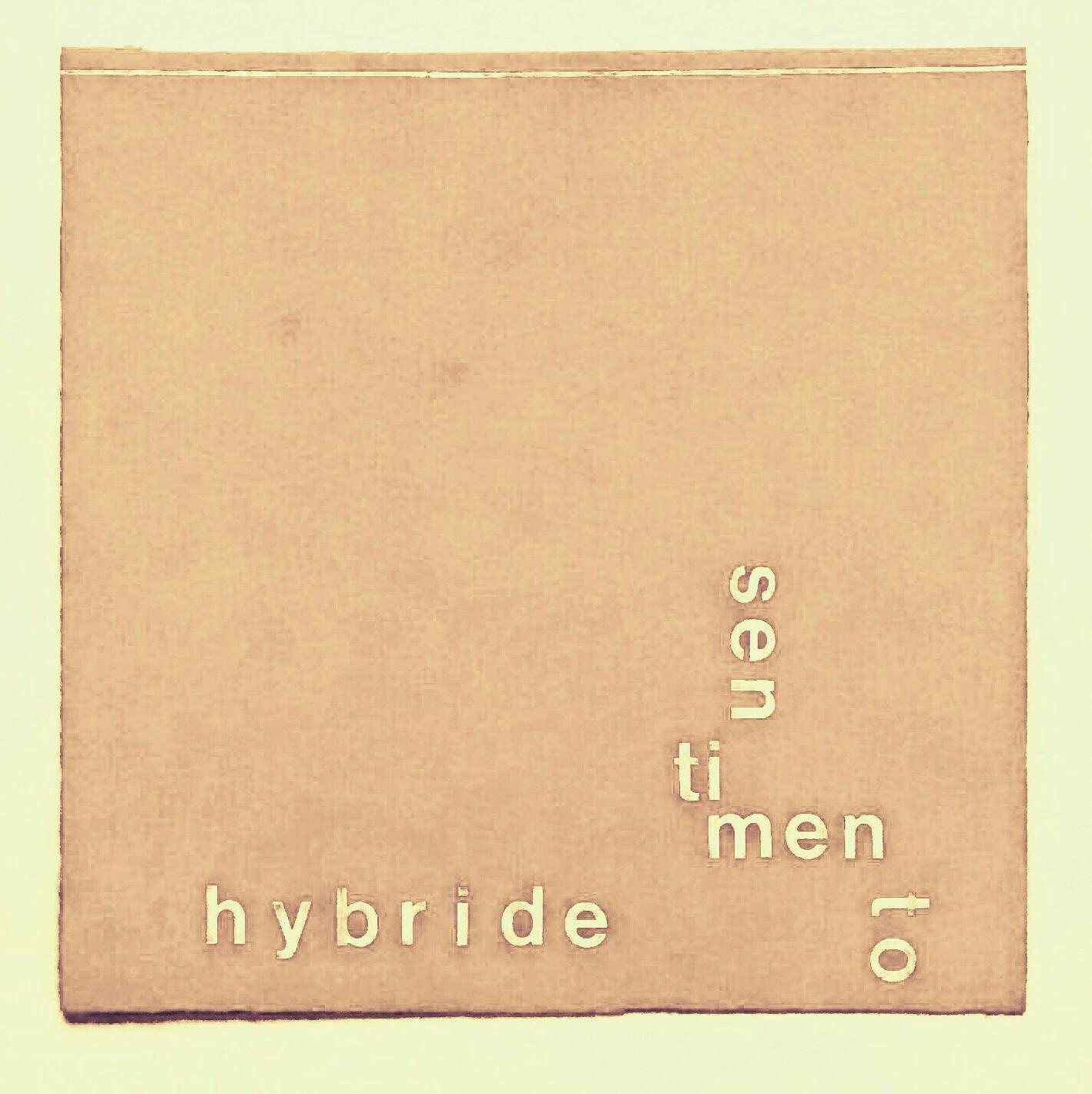 Profile picture for Hybride Sentimento