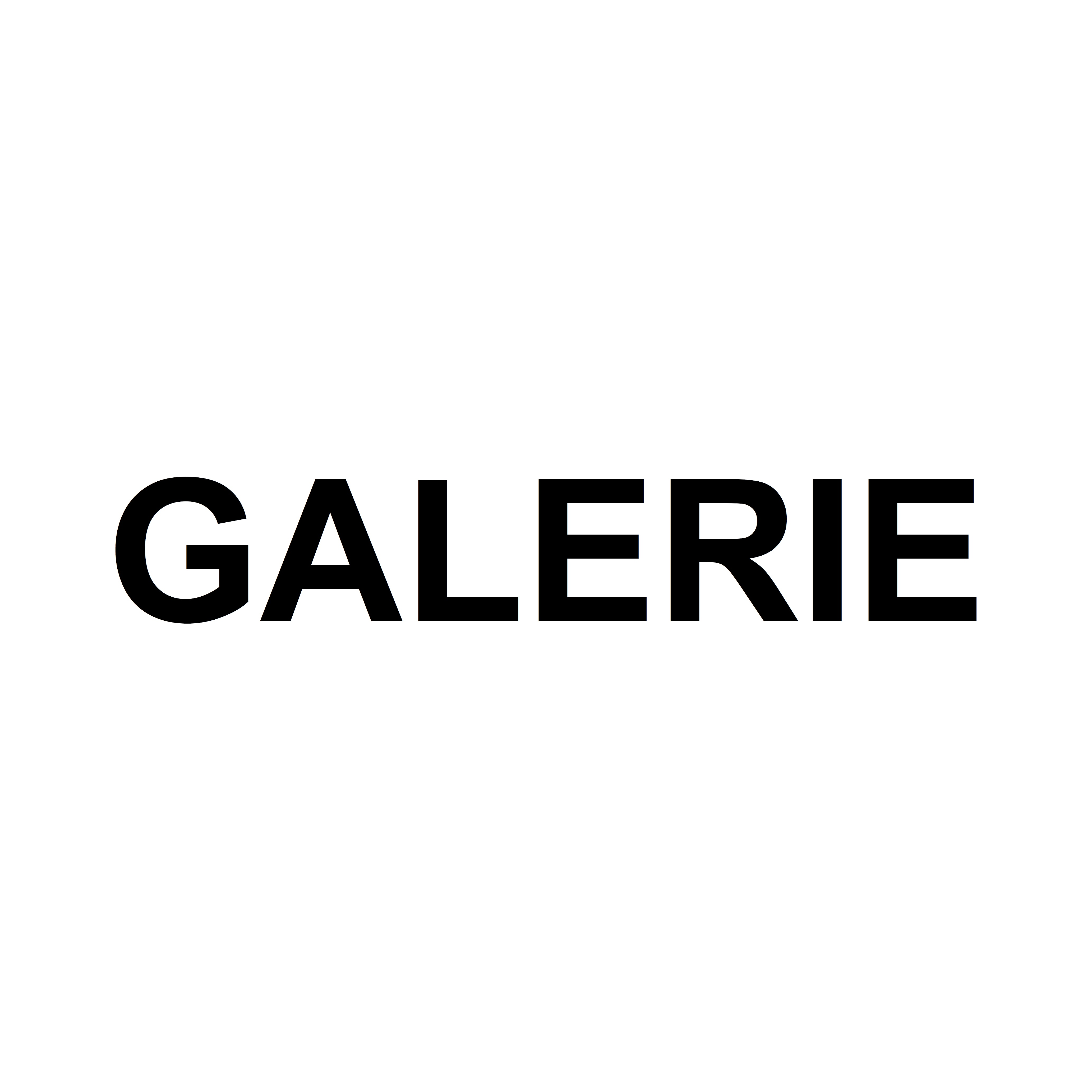 Profile picture for Galerie