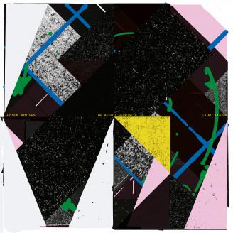 Album artwork for The Affect Heuristic