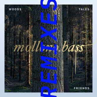 Album artwork for Woods, Tales & Friends Remixes - Part Two