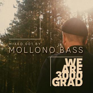 Album artwork for We Are 3000Grad ( Mollono.Bass DJ Mix )