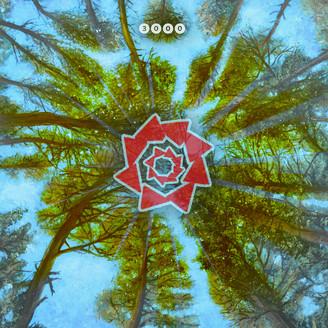 Album artwork for Scent Of Summer