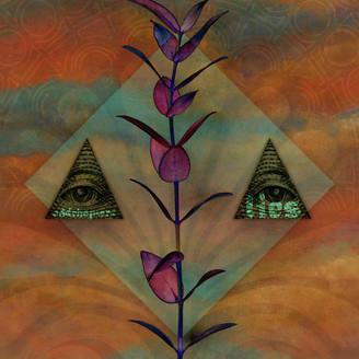 Album artwork for Lies