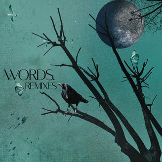 Album artwork for Words - Remixes