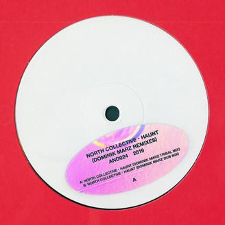 Haunt (Dominik Marz Remixes)
