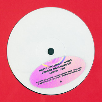 Album artwork for Haunt (Dominik Marz Remixes)