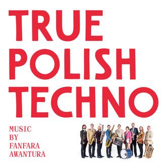 Album artwork for True Polish Techno