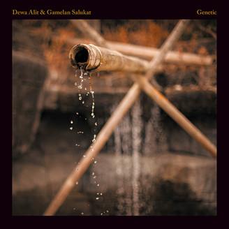 Album artwork for Genetic