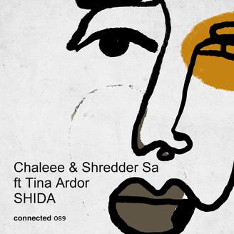 Album artwork for Shida feat.Tina Ardor