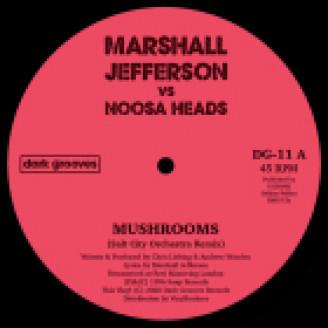 Album artwork for Mushrooms