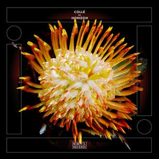 Album artwork for Horizon