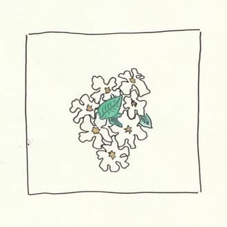 Album artwork for The Blacksmith Courted Me