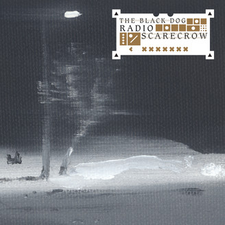 Album artwork for Radio Scarecrow