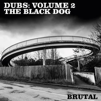 Album artwork for Dubs: Volume 2