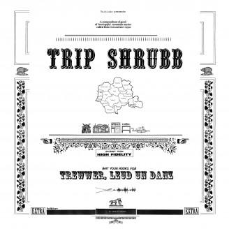 Album artwork for Trewwer, Leud un Danz