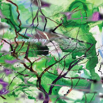 Album artwork for Branches