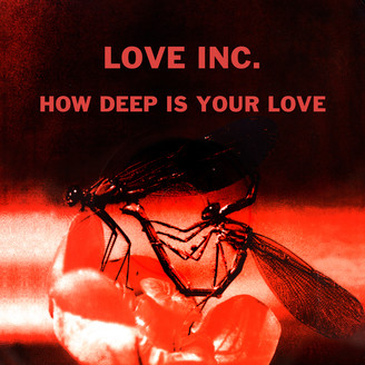 Album artwork for How Deep Is Your Love